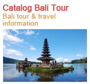 Bali Tour Information & Best Indian Restaurant in bali