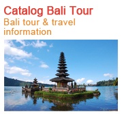 Bali Tour Information & Best Indian Restaurant in bali